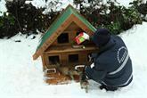 Bağcılar'da Soğuk Ve Yağışlı Havada Köpek Ve Kediler Unutulmadı