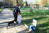 Sokağa Çıkma Yasağında Sokak Hayvanları Unutulmadı