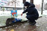 Bağcılar Belediyesi, Sokak Hayvanları İçin Seferber Oldu