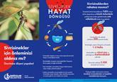 Sivrisineklerden 3K Yöntemi İle Kurtulun